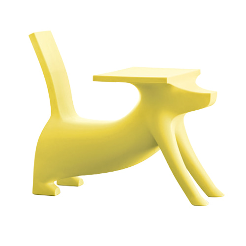 Le Chien Savant Yellow